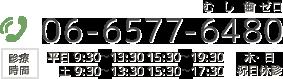06-6577-6480